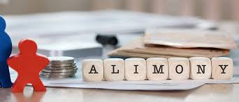 Lawyer for alimony in south delhi