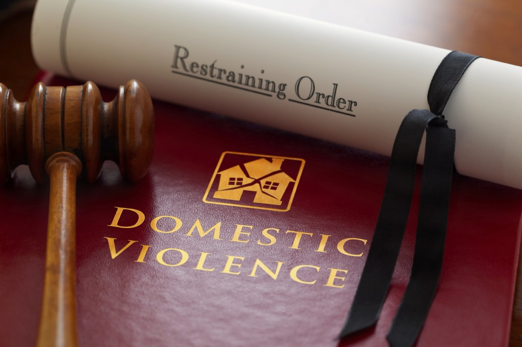 Best domestic violence case lawyer in north Delhi