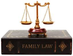 Family Case Lawyer in south delhi