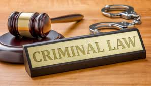 Best Criminal Lawyer in Punjabi Bagh